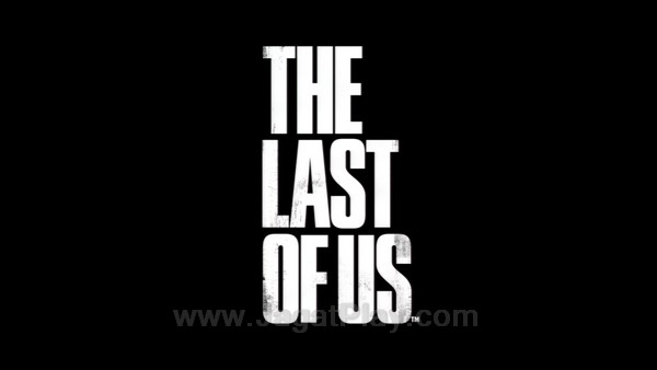 The Last of Us part 2 (35)
