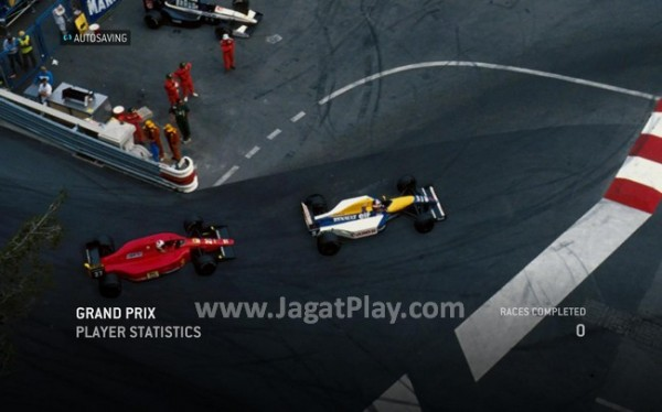 F1 2013 - Game (41)