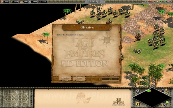 Age of Empires II - 28