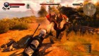 The-Witcher-3-wild-hunt-7-minutes-gameplay-28-600x338