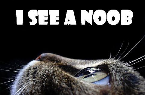 i see a noob