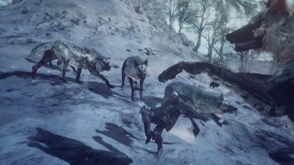 Ashes of Ariandel (12)