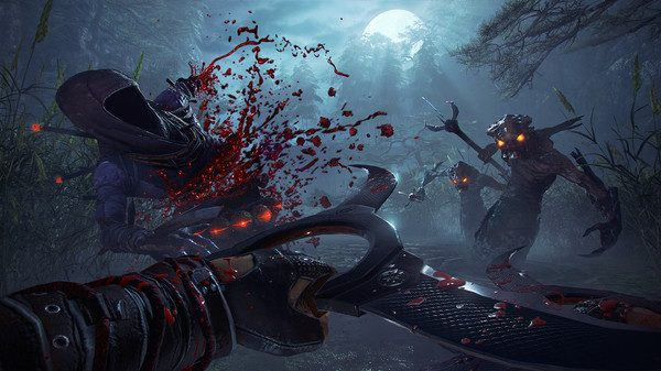 shadow warrior 21