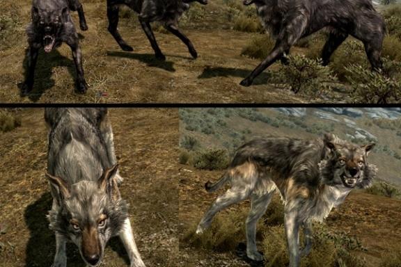 wolf skyrim