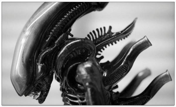 2745819 com alien