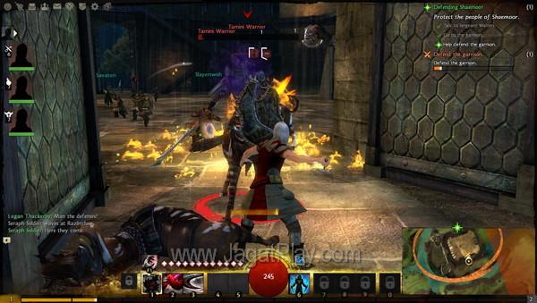 Guild Wars 2 30