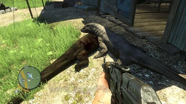Far Cry 3 29