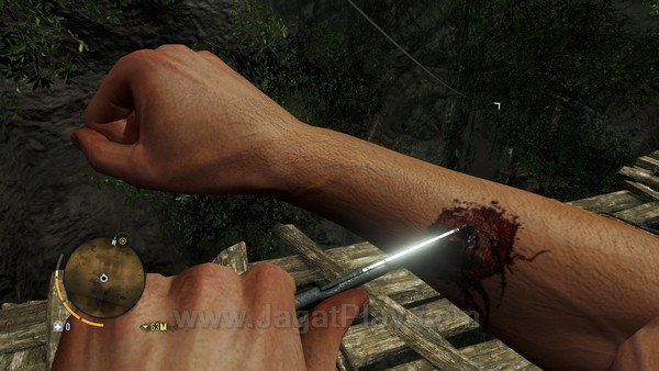 Far Cry 3 part 2 4