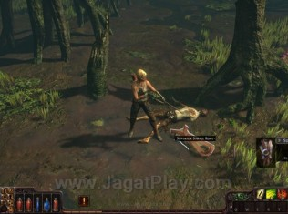 Path of Exile 28