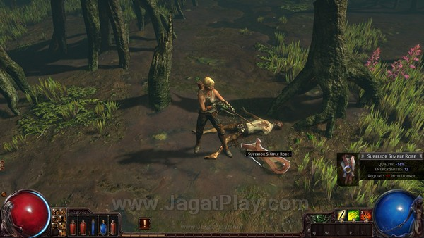 Path of Exile (28)