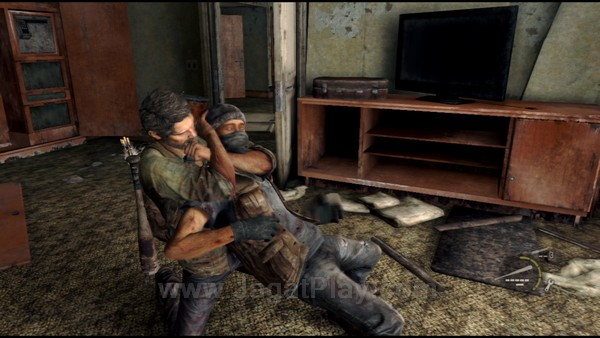 The Last of Us 103