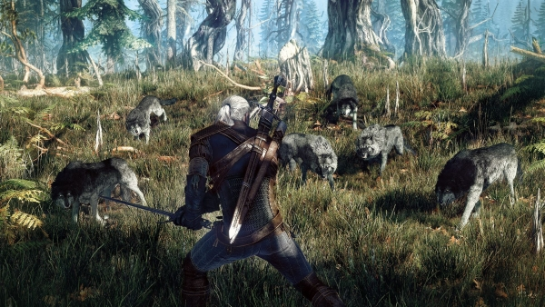 the witcher 3 wild hunt new