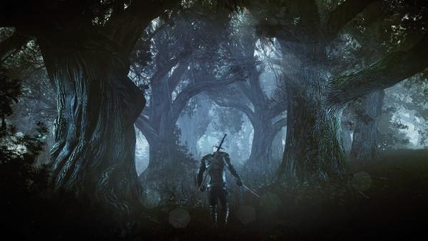 the witcher 3 wild hunt gamescom 2013