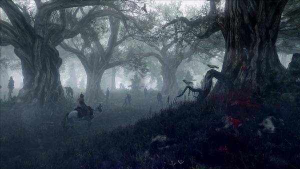 the witcher 3 wild hunt gamescom 20136
