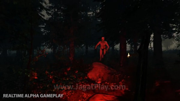 The forest (12)