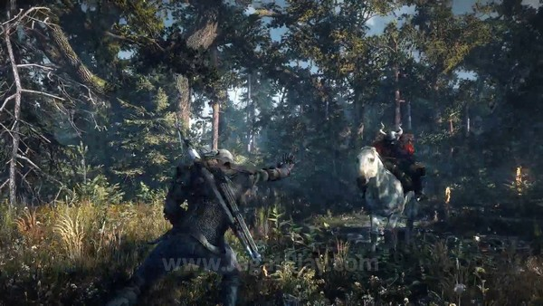 The Witcher 3 first gameplay trailer  (15)