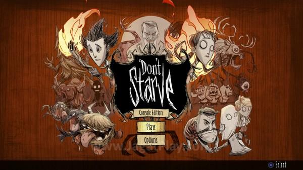 Dont Starve Playstation 4 (2)