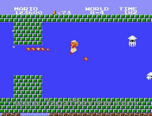 Mekaniknya sendiri mirip dengan level dalam air Mario Bros klasik.