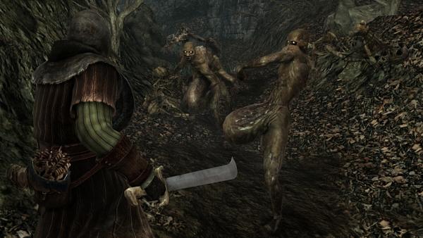 Amazon yang seringkali dilihat sebagai sumber informasi yang akurat membocorkan tanggal rilis Dark Souls II versi PC. Terlambat dua bulan sejak versi konsolnya, Dark Souls II diklaim akan dirilis pada 31 Mei 2014 mendatang.