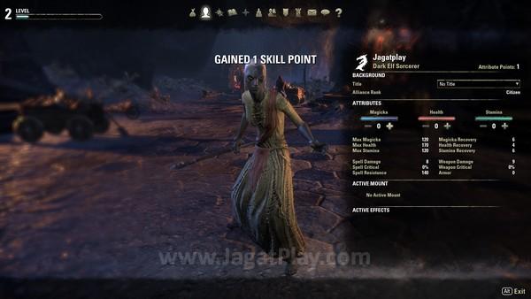 Level dan experience points akan sangat ditentukan oleh quest yang berhasil Anda selesaikan.