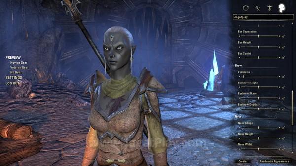 Atmosfer Elder Scrolls sebenarnya sudah mengalir kuat sejak awal, dari kesempatan menciptakan tampilan karakter dengan bebas. Anda juga harus memilih satu dari tiga faksi, sembilan ras, dan empat kelas untuk menciptakan karakter unik Anda sendiri.