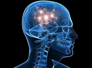 brain dopamine