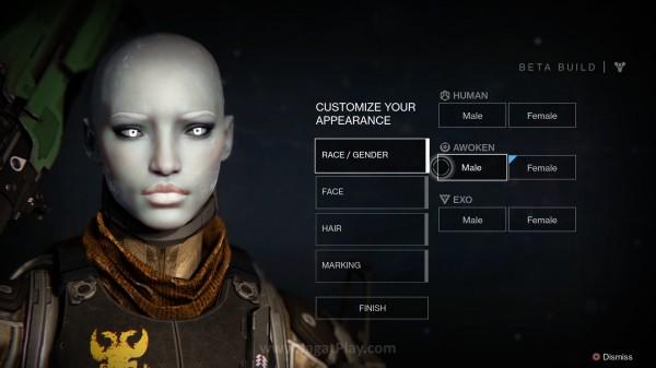 Ada variasi kelas dan ras yang bisa Anda modifikasi untuk karakter utama Anda.