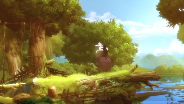 Hanya dalam satu minggu setelah rilis, Ori and the Blind Forest mencatat keuntungan bersih. Microsoft senang dengan hasil ini dan membuka masa depan lebih besar untuknya.