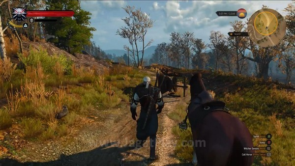 The Witcher 3 wild hunt 7 minutes gameplay (10)