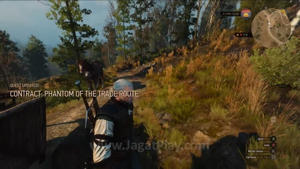 The Witcher 3 wild hunt 7 minutes gameplay (11)
