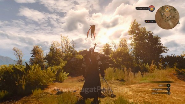 The Witcher 3 wild hunt 7 minutes gameplay (24)