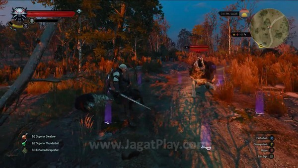 The Witcher 3 wild hunt 7 minutes gameplay (3)