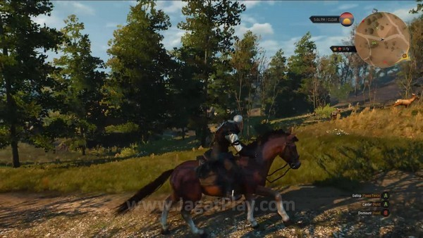 The Witcher 3 wild hunt 7 minutes gameplay (9)