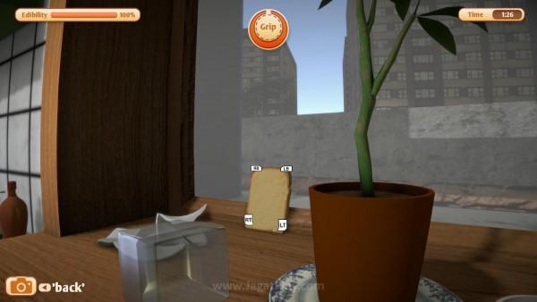 Jangan kaget bila suatu saat Anda menemukan sepotong roti menatap Anda dari balik jendela