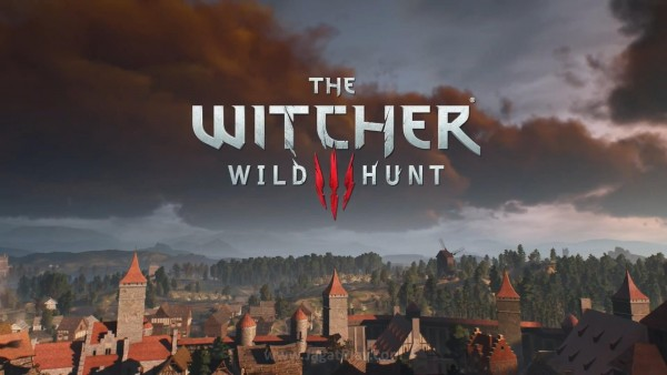 The witcher 3 wild hunt (13)