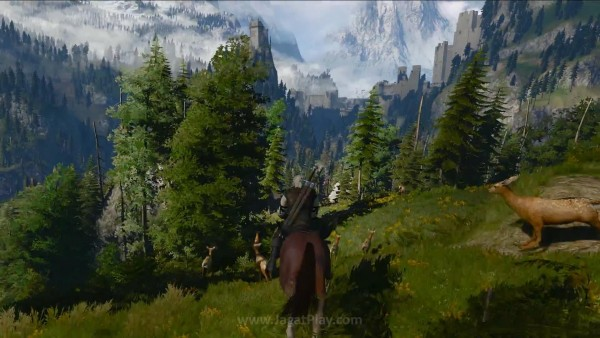 The witcher 3 wild hunt (19)