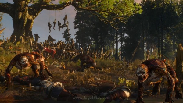 The witcher 3 wild hunt (23)