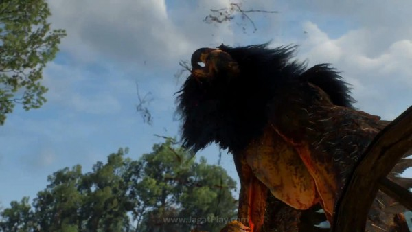 The witcher 3 wild hunt (26)