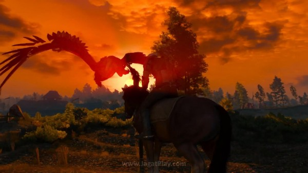 The witcher 3 wild hunt (32)