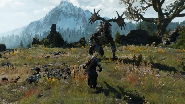The witcher 3 wild hunt (33)
