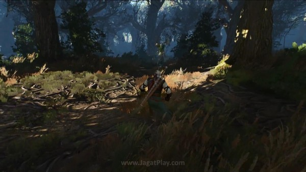 The witcher 3 wild hunt (34)