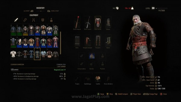 The witcher 3 wild hunt (37)