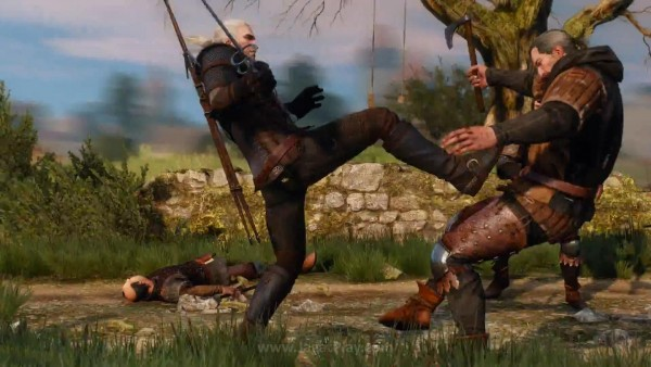 The witcher 3 wild hunt (39)