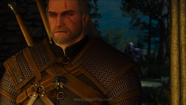 The witcher 3 wild hunt (45)
