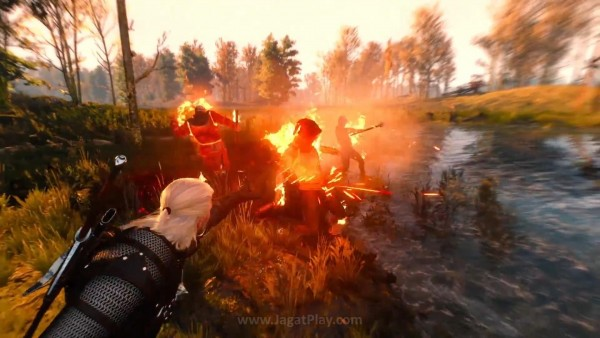 The witcher 3 wild hunt (47)