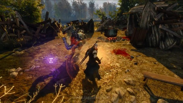The witcher 3 wild hunt (50)