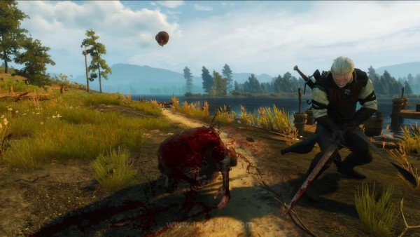 The witcher 3 wild hunt (59)