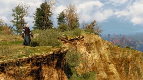 The witcher 3 wild hunt (60)