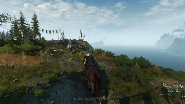 The witcher 3 wild hunt (62)
