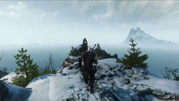 The witcher 3 wild hunt (67)